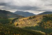 Las laderas de las montañas de los cárpatos — Foto de Stock