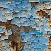 Texture 10 — Photo