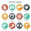 Set of flat icons with human internal orangs — Stock Vector #37312479