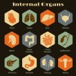 Set of retro icons with human internal orangs — Stock Vector