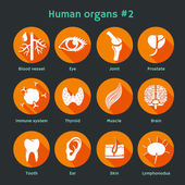Vector flat icons with human organs and systems — Stock Vector