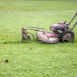 Stock Photo: Fixing lawn