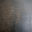 Royalty-Free Stock Photo: Black Crocodile upholstery leather