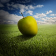 Big apple on the field — Stock Photo