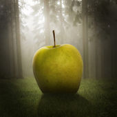 Big apple in the forest — Stock Photo