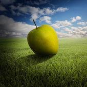 Big apple op het veld — Stockfoto