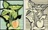 яблоки и листья — Cтоковый вектор