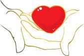 Heart in hands — Stock Vector