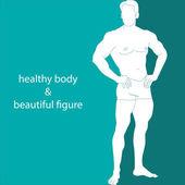 Healthy body & beautiful figure — Stock Vector