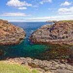Coastal Rocks on the Atlantic Seaboard — Stock Photo