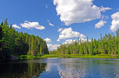 Late afternoon in Canoe Country — Stock Photo
