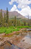 Quiet stream in the mountains — Stock Photo