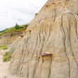 Stock Photo: Details of Badlands escarpment