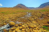 Desert Stream cutting through Volcanic Rock — Stock Photo