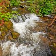 Mountain Stream in the Spring — Stock Photo #14172049