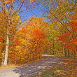 Rural Road on a Clear Fall Day — Foto Stock