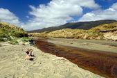 Coastal Stream through a sandy beach — Stock Photo