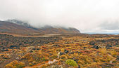 Volcanic Plains on a Cloudy Day — Stock Photo
