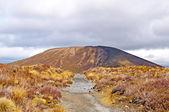 Cono de cenizas en una llanura volcánica — Foto de Stock