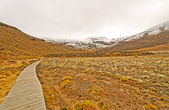 Camino a un pico nevado — Foto de Stock