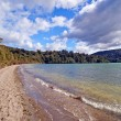 Spring Day on New Zealand Lake — Stock Photo #19238283