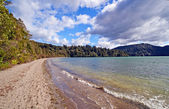 Spring Day on a New Zealand Lake — Stock Photo