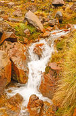 Small Stream on a Volcanic Mountain — Stock Photo