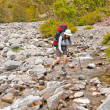 Rock Hopping a Wilderness Creek — Stock Photo