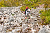 Rock Hopping a Wilderness Creek — Stock Photo