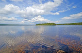 Wilderness Lake on a Summer day — Stock Photo