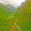 Verdant Mountain Valley in Norway — Stock Photo #21382693