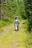 Backpacker na szlak puszczy — Zdjęcie stockowe
