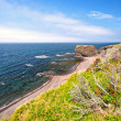 Rugged Coastal Beach In Newfoundland — Stock Photo