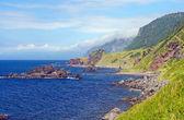夏の日の岩の海岸 — ストック写真