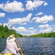 Canoer on a Lake in the North Woods — Stock Photo #22069443