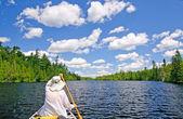 Kajakarz na jeziorze w lasach północnej — Zdjęcie stockowe