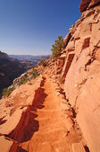 Trail into a desert Canyon — Stock Photo