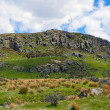 Постер, плакат: Mt Sunday used for Edoras in the Lord of the Rings Movie