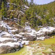 Stock Photo: Mountain Stream in Spring Snow
