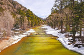 Mountain River in Spring Snow — Stock Photo