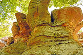 Colorful Sandstone formations in the forest shadows — Stock Photo