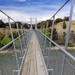 Suspension Bridge for a foot trail — Stock Photo