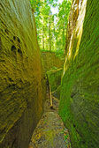 Mossy trail through a natural rock ravine — Stock Photo