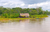 Native house along a rain forest river — Foto Stock