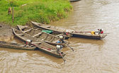 Native Canoes in the Rain Forest — Photo