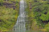 Verdant Falls on a Sub tropical Island — Stock Photo