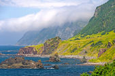 Clouds and Crags along an Ocean Coast — 图库照片