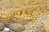 Basalt Columns and Pillow Lava at the Giant's Causeway — Photo