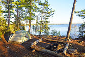 Morning Shadows on a Wilderness Campsite — Stock Photo