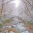 Stock Photo: Mountain Stream in a Spring Snow Storm